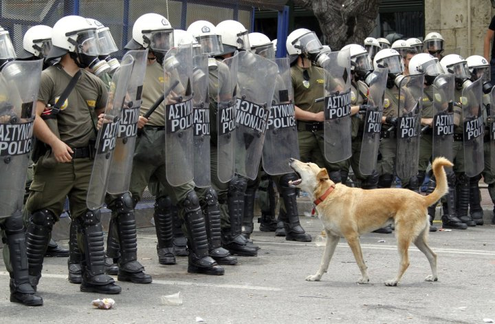 in-fact-he-often-went-where-other-protestors-dared-not.jpg